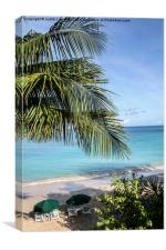 The Tranquil Beach Barbados, Canvas Print