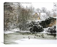A Frozen Duck Pond , Canvas Print