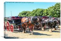 Sark Horse and Carriage, Canvas Print