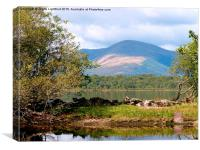 INCHCAILLOCH ISLAND ON LOCH LOMMOND SCOTLAND, Canvas Print