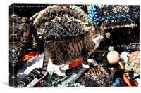 CAT AMONGST THE LOBSTER POTS, Canvas Print