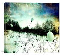 Snow Burs Textured , Canvas Print