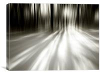 Winter Light Improved Gray, Canvas Print