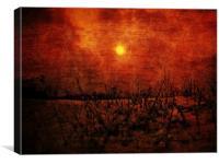 Snowbank Sway, Canvas Print