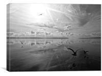 Salt Lagoon B&W, Canvas Print