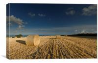Harvest View, Canvas Print