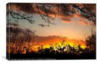 Fire and Dusk, Canvas Print