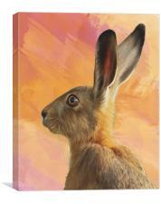 Hare , Canvas Print