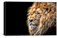 The Lion, Canvas Print