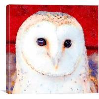 Barn Owl, Watercolour, Digital Painting, Canvas Print