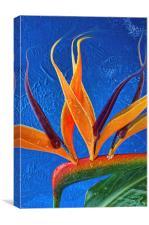 Fata Morgana, Canvas Print