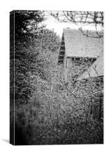 forgotten house , Canvas Print