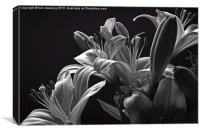 Floral display B&W, Canvas Print