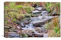 The stream, Canvas Print