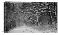 Snowy Lane, Canvas Print