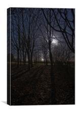 Eerie Wood, Canvas Print