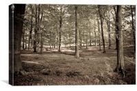 Woodland, Canvas Print