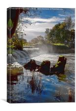 Yeovilton Weir , Canvas Print