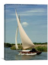 Traditional Broads Cruiser, Canvas Print