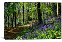 """Taking a walk in the bluebell woods"", Canvas Print"