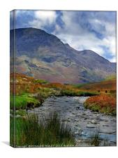 """Mountain stream"", Canvas Print"