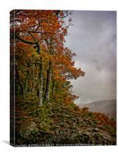 """Autumn on the misty mountain top"", Canvas Print"