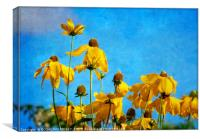 """""""All things bright and beautiful"""", Canvas Print"""