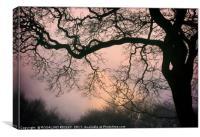 """Sunrise through the Winter fog"", Canvas Print"