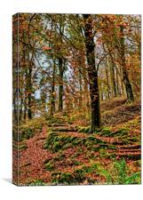 """Autumn trees on a lakeland hillside"", Canvas Print"