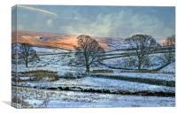 """Evening light across the snow"", Canvas Print"