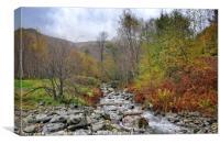"""Autumn at the mountain stream"", Canvas Print"