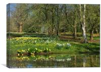 """""""Daffodils and sunny days"""", Canvas Print"""