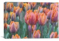 """Artistic Tulips"", Canvas Print"