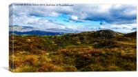 View from Holme Fell Summit, Canvas Print