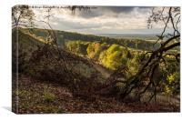 A View from Belvoir Ridge, Canvas Print