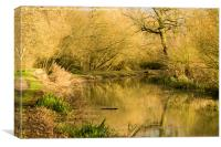 Golden Hour on the Grantham Canal, Canvas Print