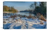Winter Scene 2, Canvas Print