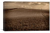 Sepia Undulating Field , Canvas Print