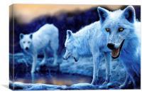 Arctic White Wolves, Canvas Print