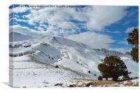Winter beauty on mountain ,