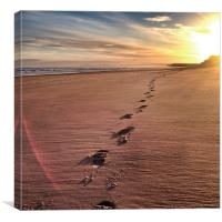 Footbprints in the sand, Canvas Print