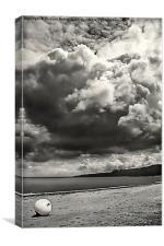 Beach Buoy , Canvas Print