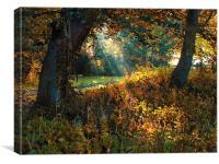 Railway Autumn, Canvas Print