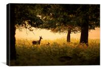 Mother and baby deer , Canvas Print