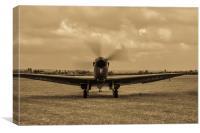 spitfire, Canvas Print