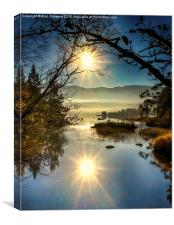 Sunrise at Loch Morlich, Canvas Print