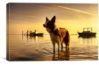 Sunrise at Thornham Harbour, Canvas Print