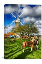 Great Bircham Windmill, Canvas Print