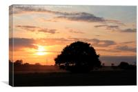Sunset at Stebbing, Canvas Print