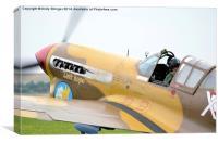Curtiss Hawk 75 plane, Canvas Print
